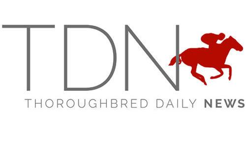 logo-na-resized-for-shared-stories1
