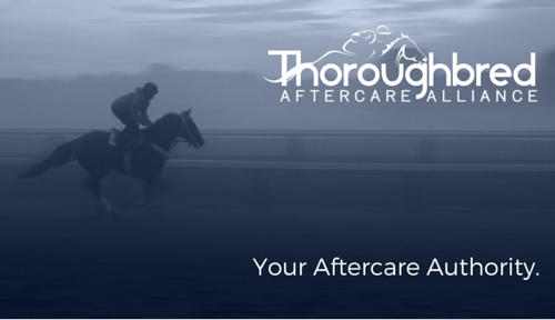 Your Aftercare Authority. headline photo for website2