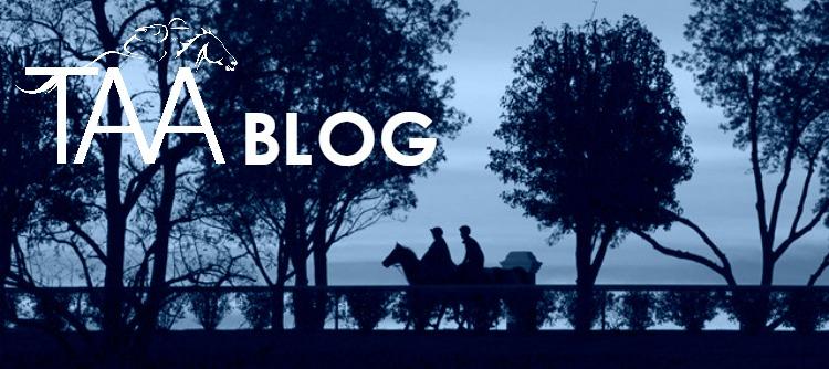 taa-blog-website-masthead