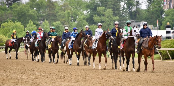 TAA, StarLadies Racing to Present Best Turned Out Horse Awards