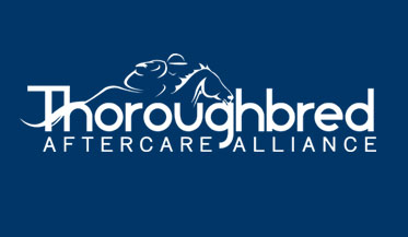 Thoroughbred Aftercare Alliance Accreditation Application Available Online