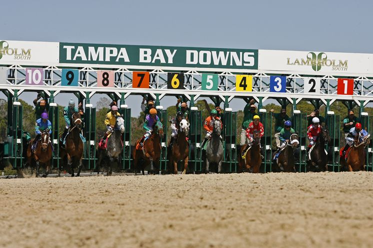 Tampa Bay Downs Signs On with the TAA