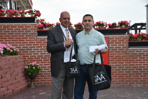 """TAA and StarLadies Racing to Present """"Best Turned Out"""" Horse Awards"""