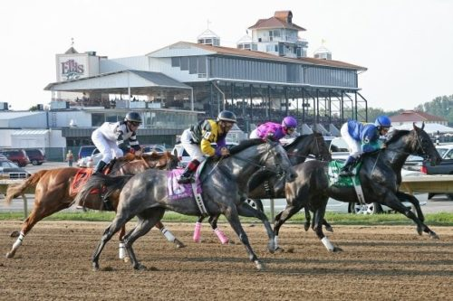Ellis Park staging Thoroughbred Aftercare Day July 17