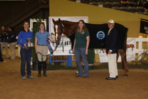 Mac Goo (Show name Red Alert) IHSA National Champion High Point, from the University of Kentucky Equestrian Team