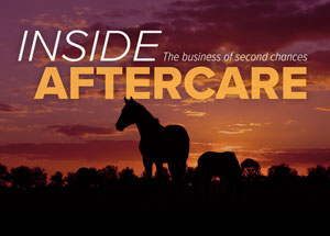 Aftercare Buzz at the World's Richest Race