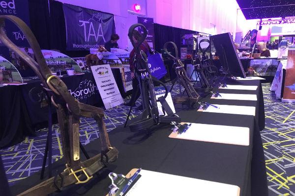 Equestricon silent auction halters