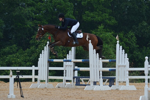Klassic Storm - Fair Hill TB Show - DMG Photography -- SMALL
