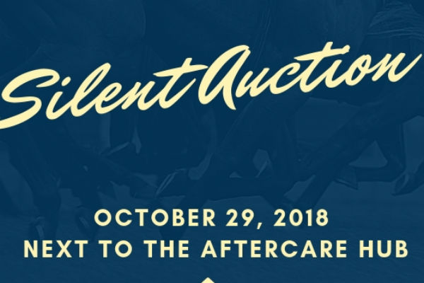 TAA Silent Auction at Equestricon 2018