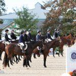 horse show OTTBs