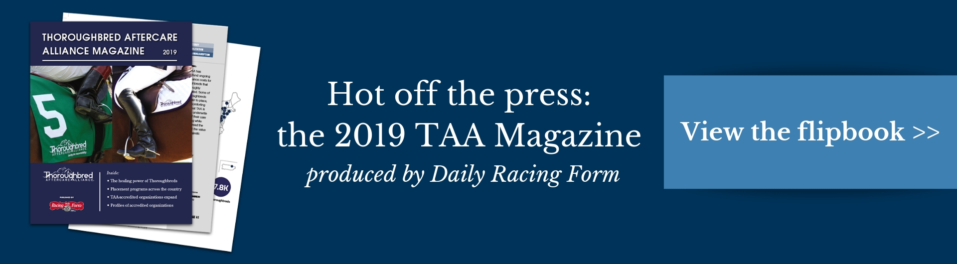 2019 TAA magazine header
