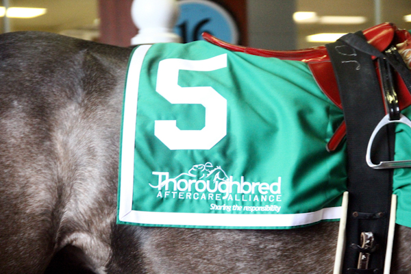 TAA Partners With StableDuel, Friends of MJC to Present Best Turned Out Awards at Pimlico