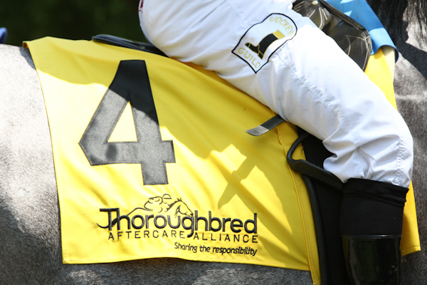 TAA saddle towel 4