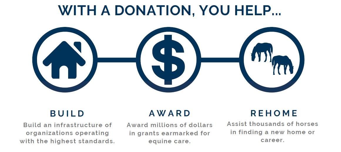 TAA CARMA breeders' cup donation graphic