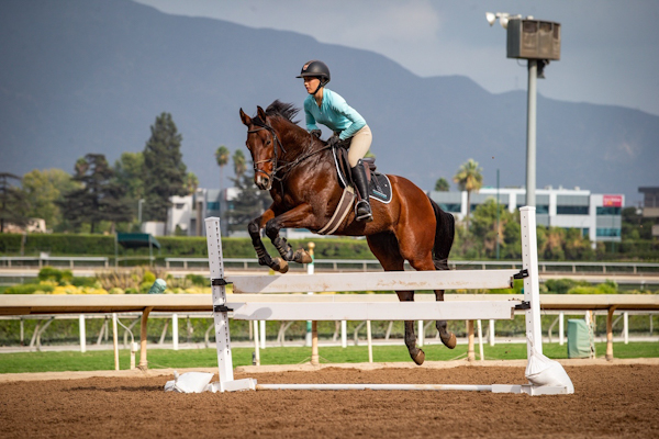 CARMA An Invaluable Resource for California Horsemen