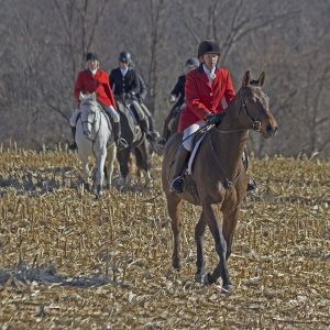 Kevin'sgotaprize and Sally Shirley on the hunt