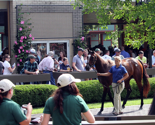 Fasig-Tipton, Keeneland Revise Funding Procedures for TAA