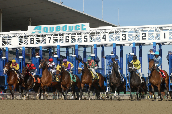 Breaking from the gate at Aqueduct Racetrack