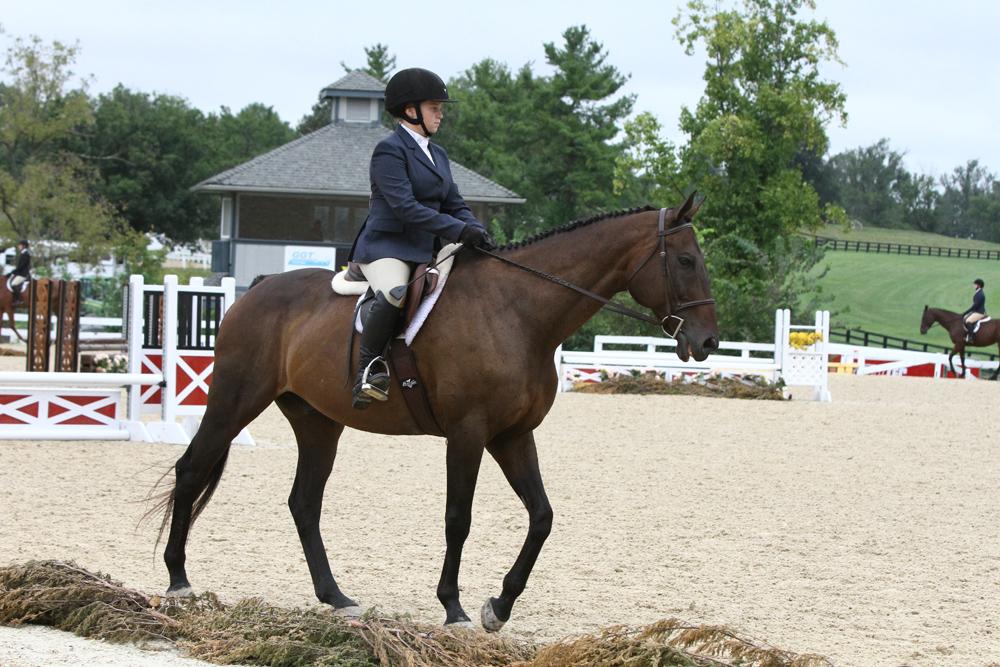 Callmetony at a horse show