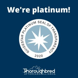 Guidestar Platinum 2020 graphic