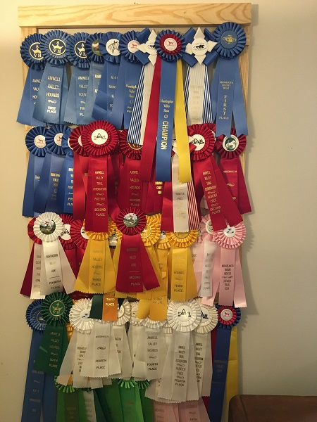 Sawdust competition ribbons