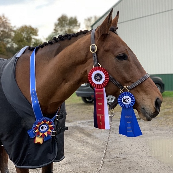 Tricky G shows off his blue ribbons